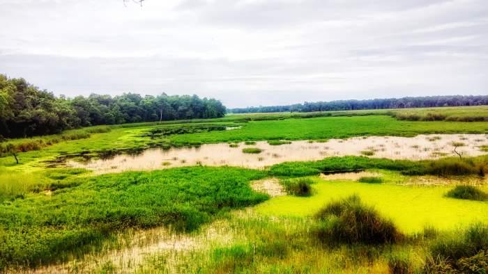 Sukhlaphata National Park