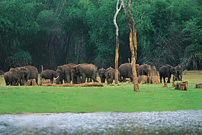 South Indian – Kerala backwater tour – 9 days