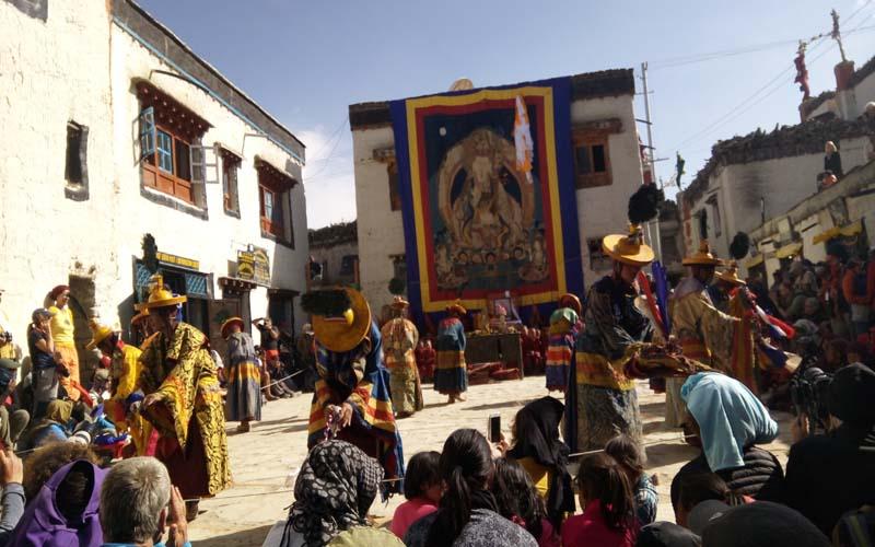 Tiji Festival Mustang