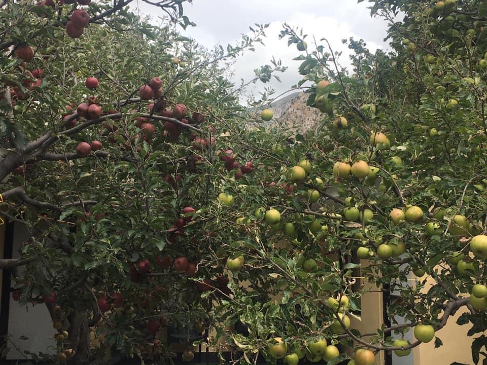 Muktinath Darshan – 5 days
